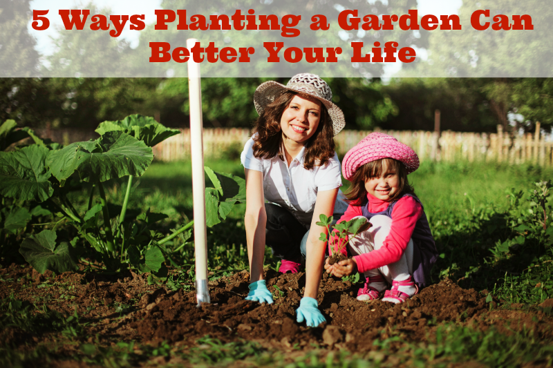 5 Ways Planting a Garden Can Better Your Life