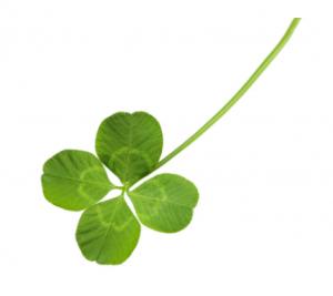Mall of Georgia:Shake Your Shamrock St. Patrick's Day celebration on March 17